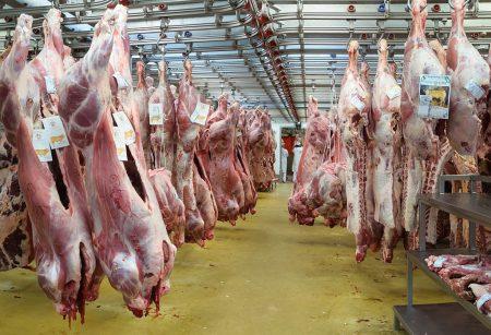 MIN Rungis viandes de boucherie veau - Droit d'auteur: Wikipédia – License CC0