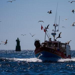Second de pêche 11