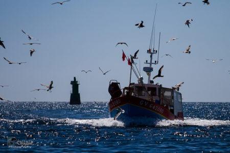 Retour de pêche - Droit auteur : jean jacques Abalain - Flickr - License CC0