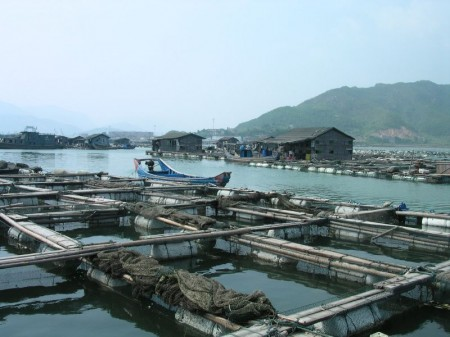 Aquaculture in Lo-nguong - droit d'auteur : Wikimedia – License CC0