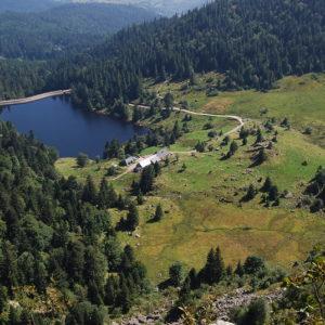 Lac dans le département des Vosges