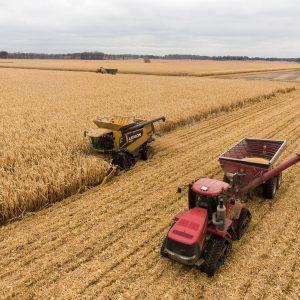 Le poste de agent / agente technique agricole 4