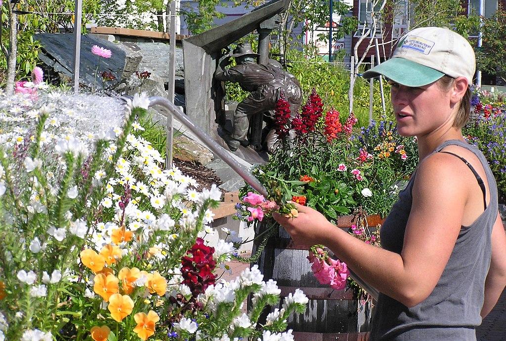 jardiniere paysagiste